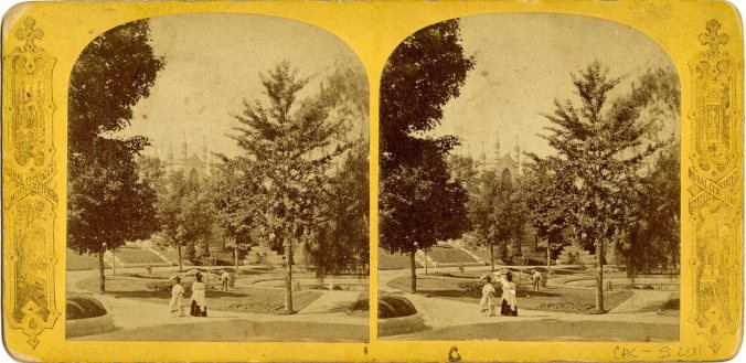 stereograph004