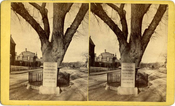 stereograph006