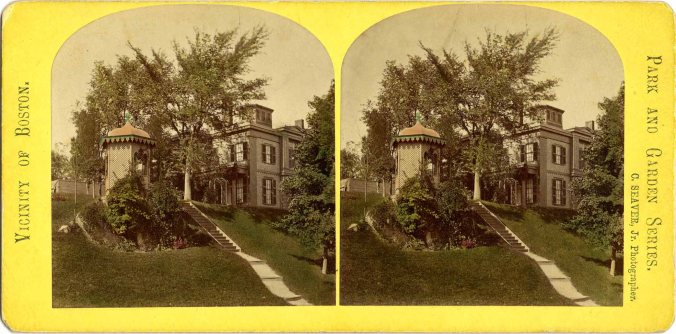 stereograph007